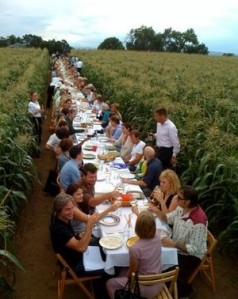 You'll feel like you're eating in a farmers field the food is so fresh!